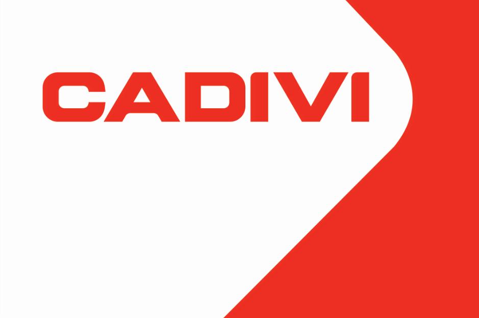 Cadivi_Logo